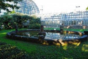 Koishikawa Botanical Garden Green House
