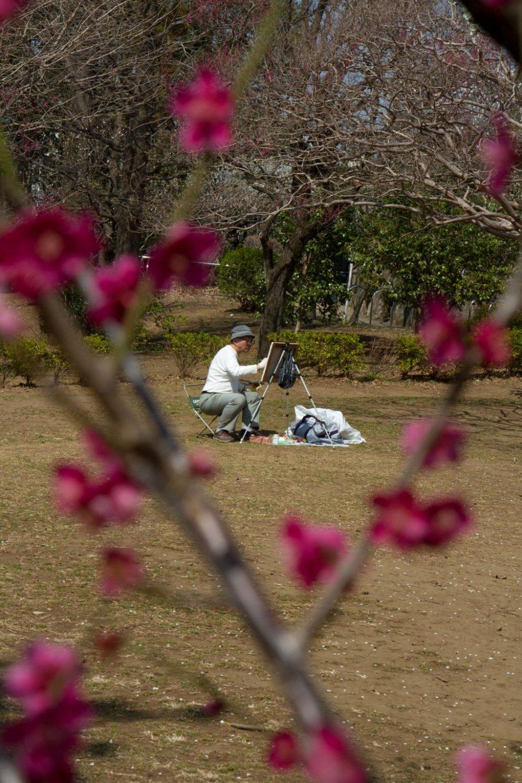 그림그리는 꽃들; 몇몇 지역 화가들이 계절의 시작을 잡기 위해 이곳에 온다