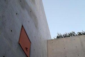 The wall near the door