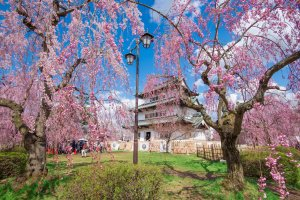 Top 10 Nơi Hấp Dẫn Ở Aomori