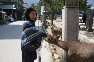 Кими приветствует оленя