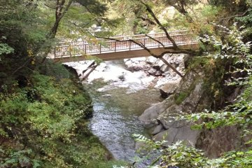 Bridge along the trail