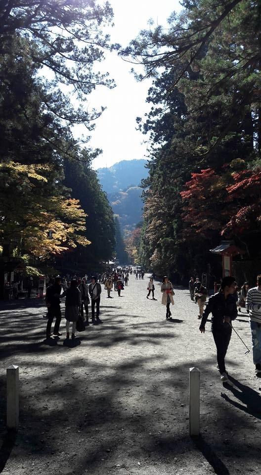 Magnifique promenade et bonne bouffée d'air frais !