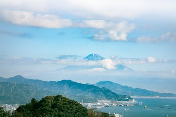 A Day Tour of Shizuoka's Best