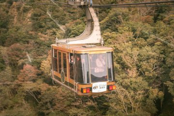 Nihondaira Ropeway: Carriage