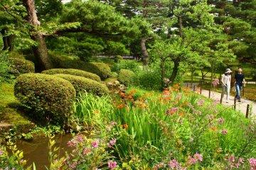 <p>여름 꽃들이 산책길에 아름다운 색채감을 더해준다</p>