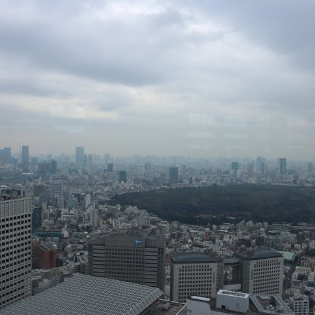 A Student's Budget Guide to Tokyo