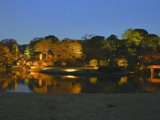 Rikugien Gardens sáng lên