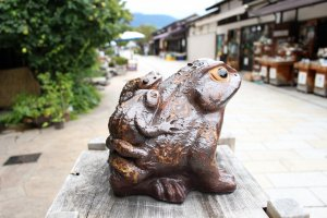 Frogs all around Nawate Street