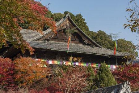 長谷寺和安倍文殊院
