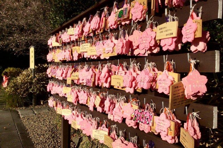 Sakuragi Shrine of Cherry Blossoms