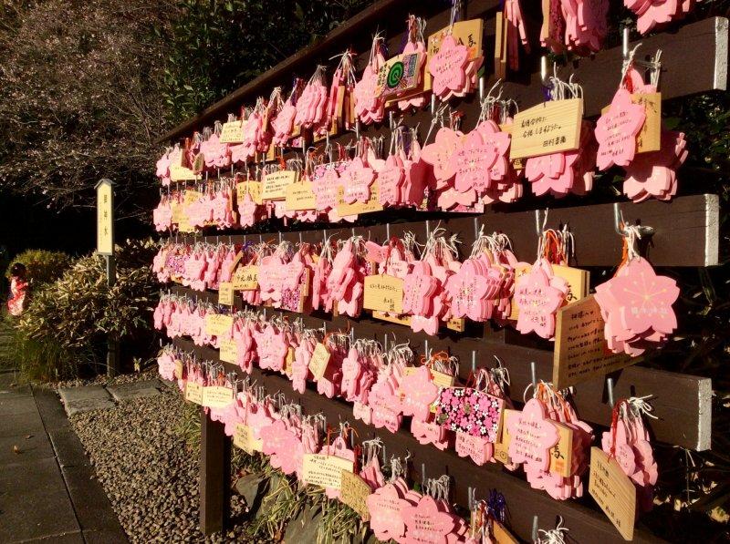 Заметные записки с желаниями - эма, в форме деревьев сакуры