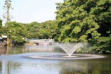 Inokashira Park - Fountain