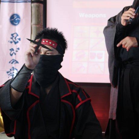Ninja Cruise to Chiba Castle