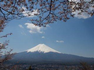 Une autre vue célèbre du Mont Fuji, toujours aussi majestueux à la fin du hanami