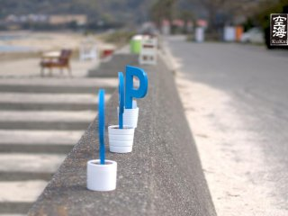 P's in pots line the border of this sea wall on the premises