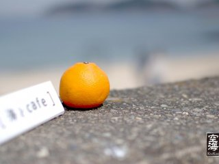 An orange sits on top of the sea wall in front of Umi to Cafe
