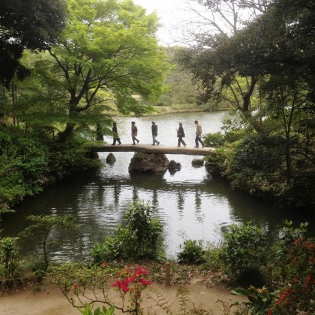 The Waka Poetry Garden - Rikugien