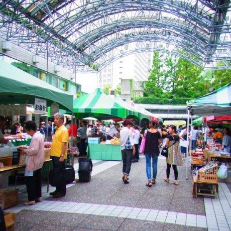 ตลาดนัด Hills Marche Farmer's Market