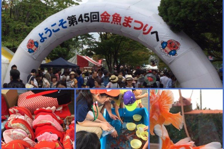 เทศกาลปลาทองเอโดะกะวะ