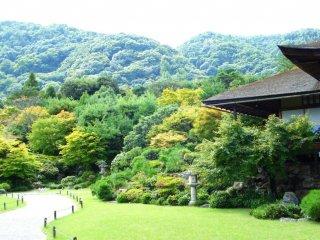 สวนมญี่ปุ่น โอะโคะจิ ซานโซะ ในอะระชิยะมะ เกียวโต