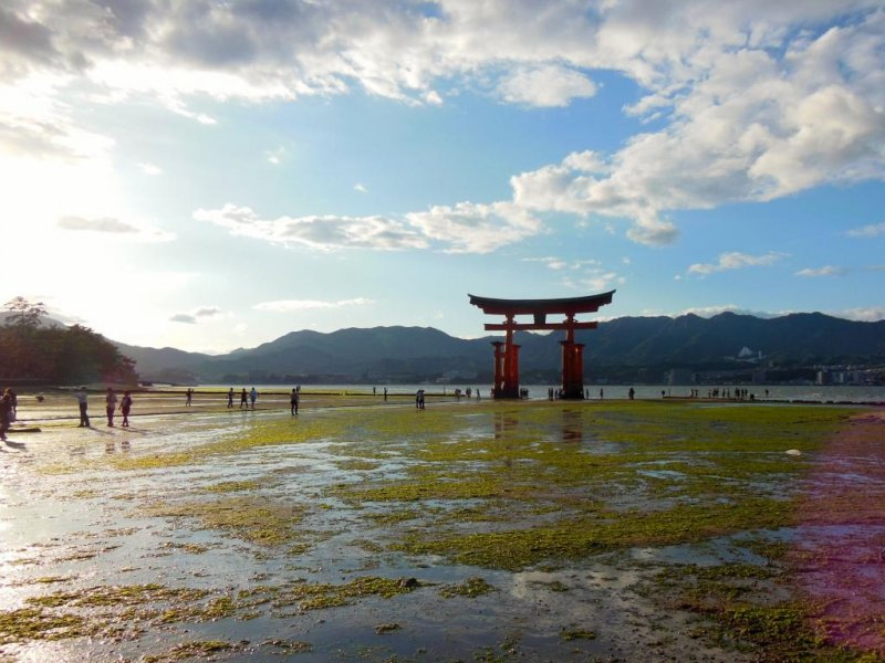 <p>Itsukushima Shrine (known popularly as the Miyajima Shrine) is a UNESCO World Heritage Site. At low tide you can walk out to it.</p>
