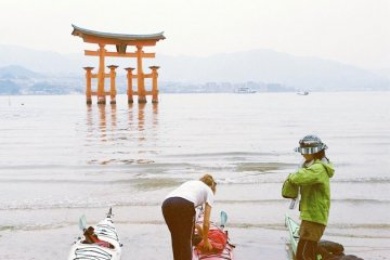 <p>On one of my trips to Miyajima I did a day long kayaking trip with the company called Paddle Park. I highly recommend it!</p>