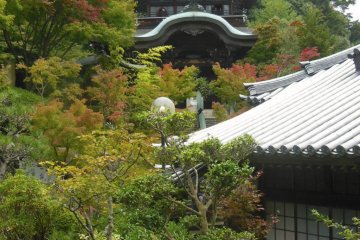 <p>At the Daisho-In temple on Miyajima Island. You can spend hours looking around this beautiful place.</p>