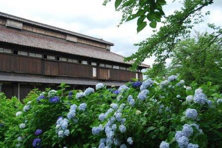 Matsugaoka