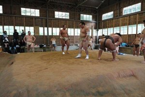 Next up: the sekitori (mid-level and higher wrestlers) prepare to display their training