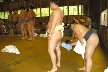 Hakuho getting ready to show his might