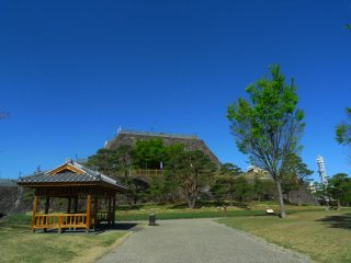 Kofu Castle also known as the Maizurujo Park
