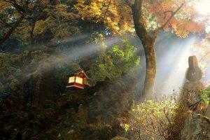 Saijoji in Autumn
