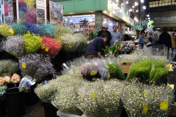 ดอกไม้นานาชนิดให้เลือกซื้อ