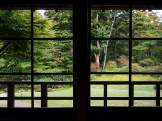 I love capturing the garden scenery through windows and doors