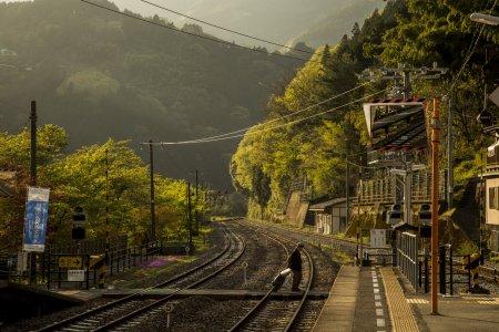 Discover Shikoku in Six Days