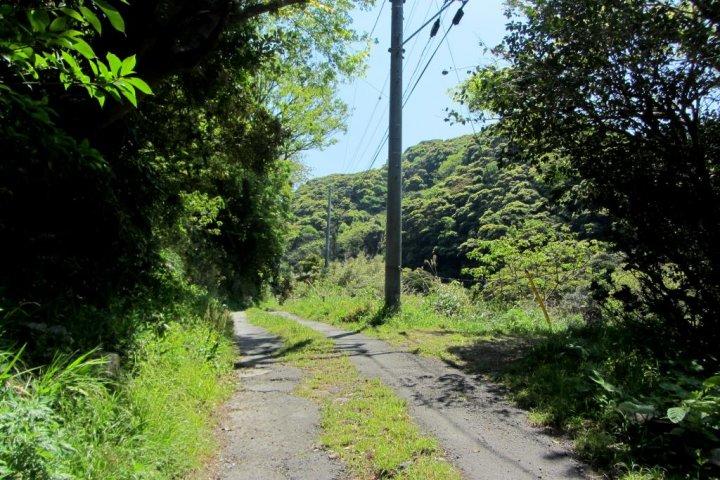 Hiking Mount Nokogiri