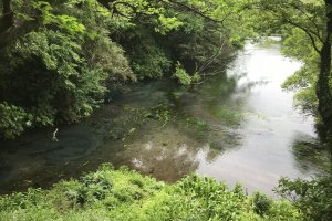 Kakita River, a nationally designated natural monument
