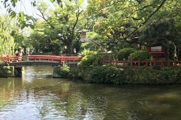 Спокойный пруд в храме Мисима Тайся