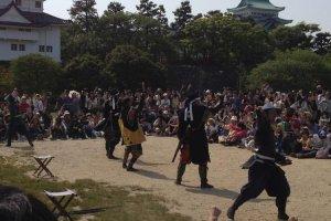 Huge crowds gather to watch the Omotenashi Busho Tai