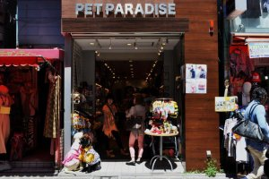 Pet fashion shop in Harajuku