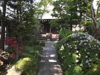 El pequeño pero agradable jardín