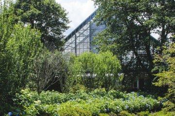 Khu vườn Nakanojo
