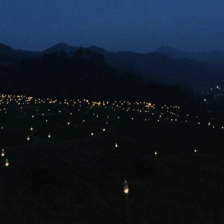 Terasaka Firefly Festival