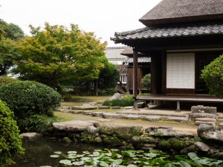 The Ohara Residence garden is the only one I've seen in Kitsuki with a pond