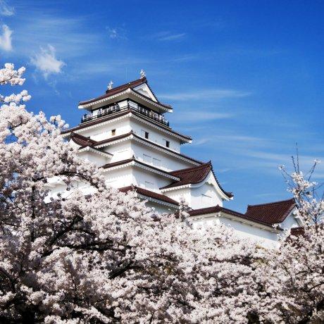 Một ngày ở Aizu
