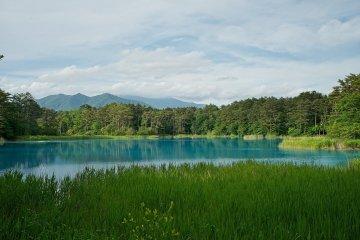 The Bentenganuma pond