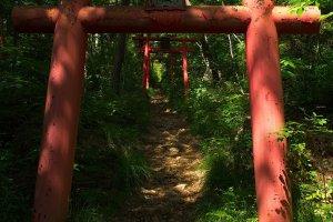 The beginning of the Chitoseyama trail