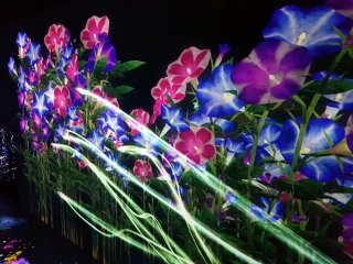 Flower forest
