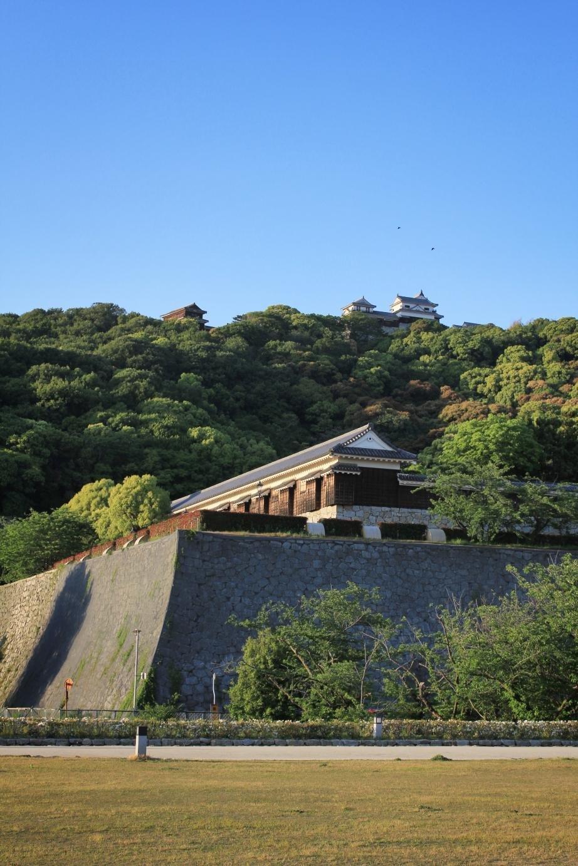 Khung cảnh nhìn lên Thành cổ Matsuyama từ công viên được rào quanh